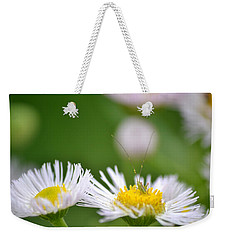 Weekender Tote Bag featuring the photograph Floral Launch-pad by JD Grimes