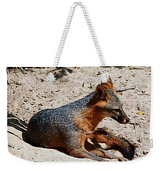 Weekender Tote Bag featuring the photograph Foxie by Debra Forand