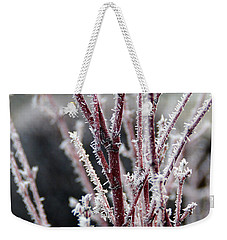 Weekender Tote Bag featuring the photograph Frosty Coral Maple by Mick Anderson