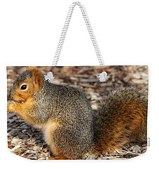 Weekender Tote Bag featuring the photograph Fruity Squirel by Elizabeth Winter