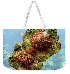 Geminivirus Particle Weekender Tote Bag
