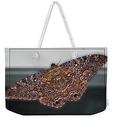 Weekender Tote Bag featuring the photograph Giant Moth by DigiArt Diaries by Vicky B Fuller