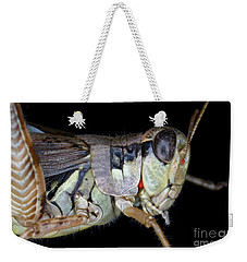 Grasshopper With Parasitic Mite Weekender Tote Bag by Ted Kinsman