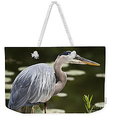Great Blue Heron  Weekender Tote Bag by Jeannette Hunt