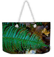 Weekender Tote Bag featuring the photograph Green Fern by Tikvah's Hope