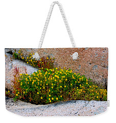 Weekender Tote Bag featuring the photograph Growing In The Cracks by Brent L Ander