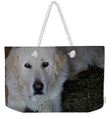 Guarding The Barn Weekender Tote Bag