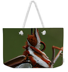 Weekender Tote Bag featuring the photograph Gulf Fritillary Butterfly Portrait by Daniel Reed