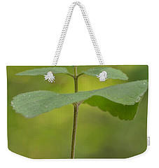 Weekender Tote Bag featuring the photograph Hairy Skullcap II by JD Grimes