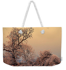 Frost 2 Weekender Tote Bag by Linsey Williams
