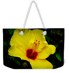 Weekender Tote Bag featuring the photograph Hawaiian Yellow Hibiscus by Athena Mckinzie