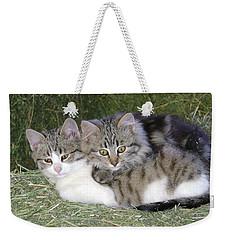 Haystack Buddies Weekender Tote Bag