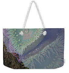 Weekender Tote Bag featuring the photograph Heart Of The Tide Pool by Mick Anderson
