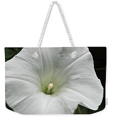 Weekender Tote Bag featuring the photograph Hedge Morning Glory by Tikvah's Hope