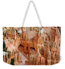 Weekender Tote Bag featuring the photograph Hideaway  by Vicki Pelham