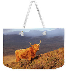 Highland Cattle Landscape Weekender Tote Bag