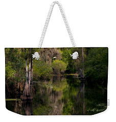 Weekender Tote Bag featuring the photograph Hillsborough River In March by Steven Sparks