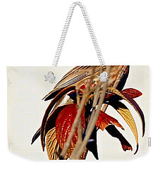 Weekender Tote Bag featuring the photograph House Finch Perch by Elizabeth Winter