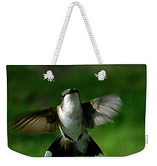 Hovering Hummingbird  Weekender Tote Bag