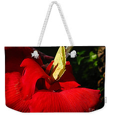 Hungry Weekender Tote Bag by Donna Brown