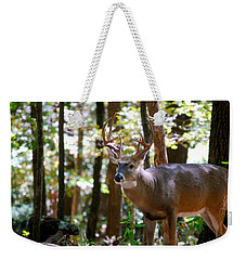 Weekender Tote Bag featuring the photograph Hunters Dream 10 Point Buck by Peggy Franz