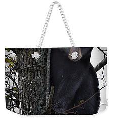 Hunting Berries Weekender Tote Bag by Ronald Lutz