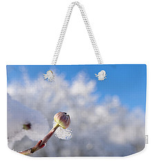 Iced Dogwood Weekender Tote Bag
