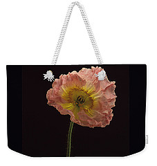 Weekender Tote Bag featuring the photograph Iceland Poppy 3 by Susan Rovira