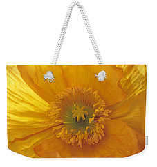 Weekender Tote Bag featuring the photograph Iceland Poppy 4 by Susan Rovira