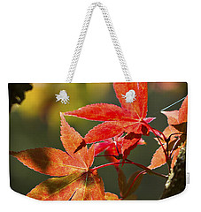Weekender Tote Bag featuring the photograph In Between... by Clare Bambers