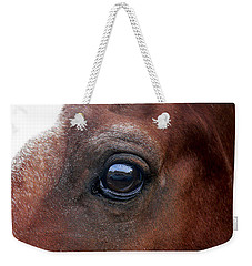 Weekender Tote Bag featuring the photograph In His Sight by EricaMaxine  Price