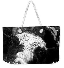 Inquisitive Zoey With Ellamay Weekender Tote Bag
