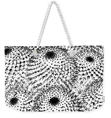 Weekender Tote Bag featuring the photograph Invisible Cactus by Rebecca Margraf