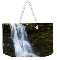 Is It Cottonwood Weekender Tote Bag by Ronald Lutz
