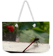 Weekender Tote Bag featuring the photograph It's Always Greener by Lainie Wrightson