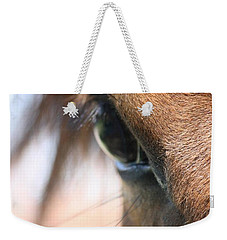 I've Got My Eye On You Weekender Tote Bag by Donna G Smith