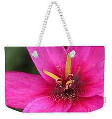Weekender Tote Bag featuring the photograph Ixia Named Venus by J McCombie