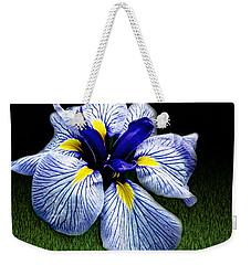 Japanese Iris Ensata - Botanical Wall Art Weekender Tote Bag by Carol F Austin