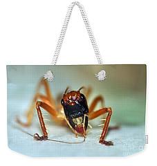 Jiminy Cricket Weekender Tote Bag by Kaye Menner