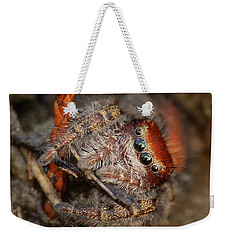 Jumping Spider Portrait Weekender Tote Bag by Daniel Reed
