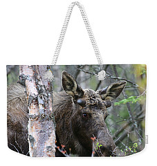 Weekender Tote Bag featuring the photograph Just A Start by Doug Lloyd