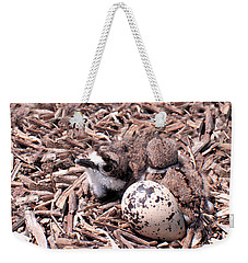 Killdeer Babies Weekender Tote Bag by Angie Rea