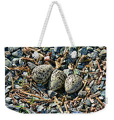 Killdeer Bird Eggs Weekender Tote Bag by Jennie Marie Schell