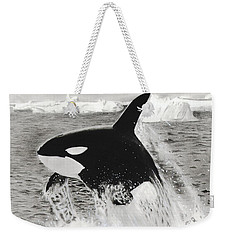 Killer Whale Weekender Tote Bag