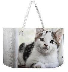 Kitten In The Window Weekender Tote Bag