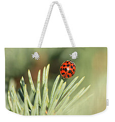 Weekender Tote Bag featuring the photograph Lady Beetle On A Needle by Penny Meyers