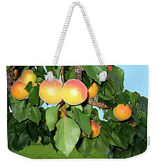 Weekender Tote Bag featuring the photograph Lake Country Apricots by Will Borden