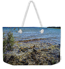 Lake Michigan 1 Weekender Tote Bag