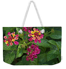 Weekender Tote Bag featuring the photograph Lantana by Joseph Yarbrough