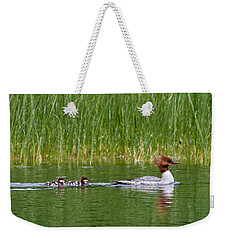 Weekender Tote Bag featuring the photograph Lazy Swim by Brent L Ander